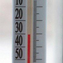 При какой температуре погибают клопы