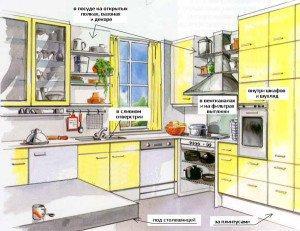 Где обитают тараканы на кухне
