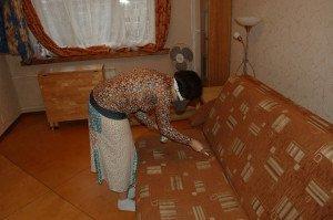 Вывести клопов из дивана народными средствами