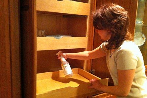 Избавиться от клопов в домашних условиях