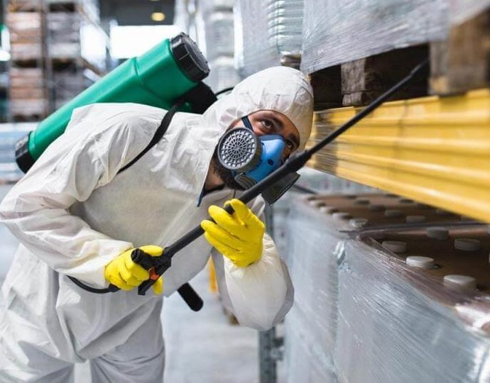 Уничтожение мышей на пищевых предприятиях
