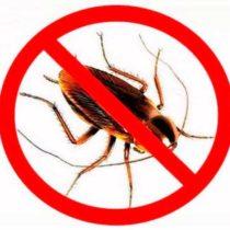 Избавиться от тараканов на производстве