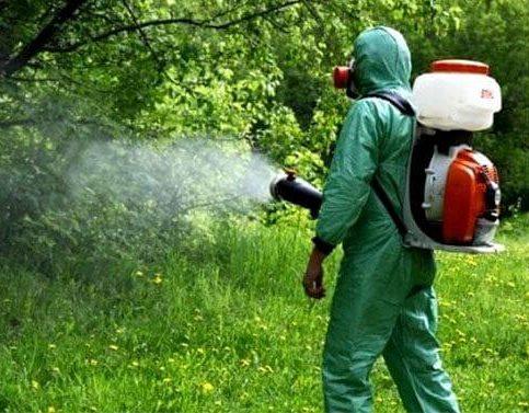 Обработка дачных участков от комаров