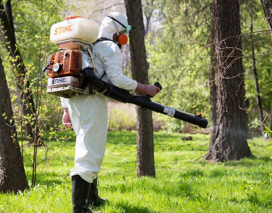Дезинсекция от комаров