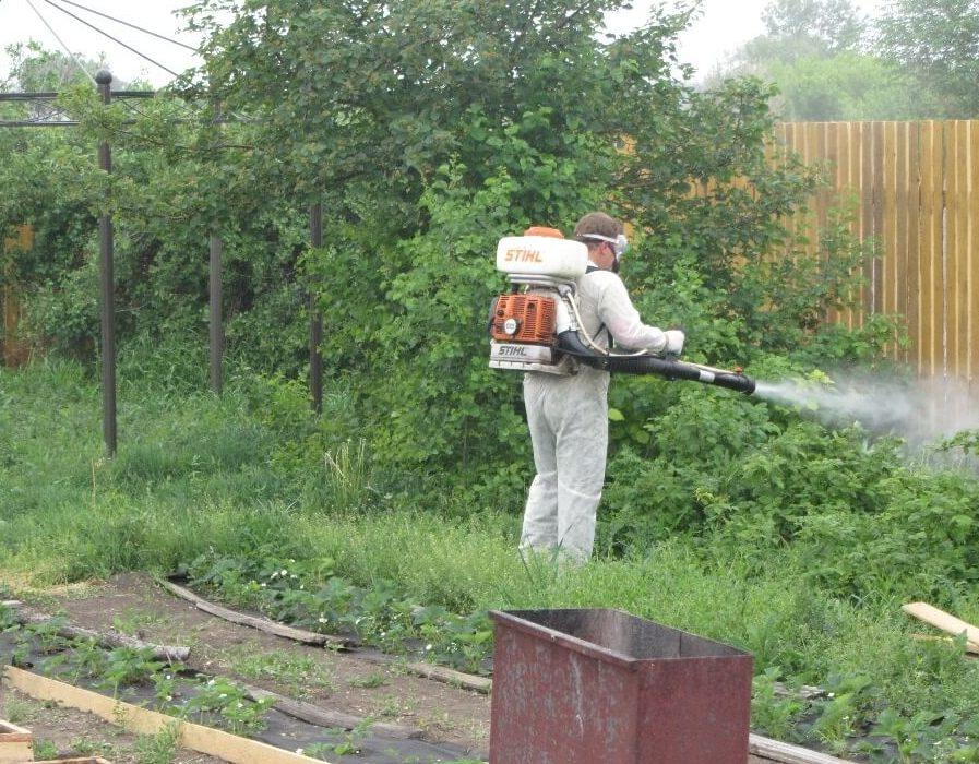 Обработка сада и дачи от комаров