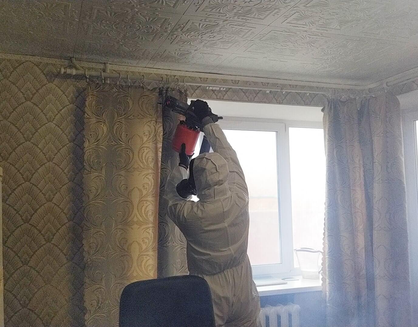 обработка дома от мух