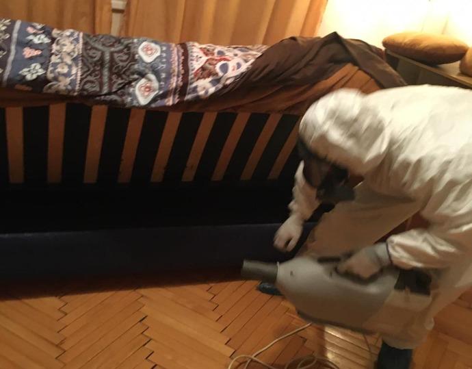 Травля клопов в квартире